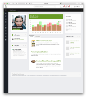 Business Portal Dashboard